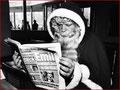 Saint-Nicolas lit les Emil-News