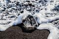 angespülter Eisberg-Rest am isländischen Strand