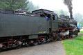"""P8 2455 """"Posen"""" bei der Anfahrt in Lausheim-Blumegg"""