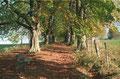 Herbstlicher Weg zur Heuwinklkapelle 1995