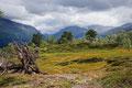 Norwegian trip, Blahornet 2014