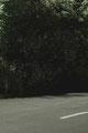 was sich rühren musste, rührte sich #5 (Israel), Hahnemühle Fine Art matt, 70x50 cm, Auflage von 3, 2015