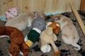 Unaufgeräumtes Kinderzimmer