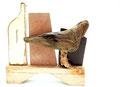 Stilleven met vogel 40x36x10cm