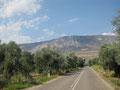 ab durch die olivenplantagen