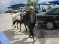 verkehrsteilnehmer in albanien