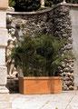 Siepi  Rechteck Terra di Siena