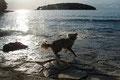 19.09.2011 - Vor dem Sonnenuntergang am Wasser