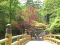 関東近郊とは思えない風景