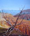 Bryce Canyon          acrylique sur toile   65*50   2007