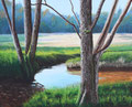 Ruisseau sur le Plateau de Millevaches   acrylique sur toile   65*50   2008