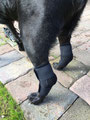 Sprunggelenk-Bandage mit Stabilieseurng