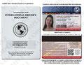 Vistas de la licencia internacional de conduccion