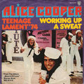 Teenage Lament '74 / Working up a sweat - Germany - Front