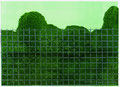 Zaun, 15 x 21 cm, Linolschnitt, 2 e.a.