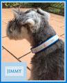 Wieder ein neues Halsband für Jimmy