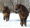 Fina und ihre Tochter Finja sehen völlig gleich aus, außer dass Finja viel kleiner ist.