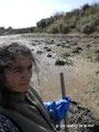 L'entretien des bassins impose un ratissage systématique des algues en hiver