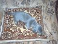 Голубо-подпалый щенок