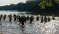 Schwimmen Brettmühlenteich