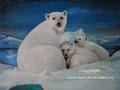 IJsberen - olieverf op canvas - 32x24cm - aug.2016 - te koop