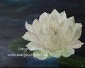 Lotus - olieverf op canvas - 50x40cm - febr.2016 - te koop
