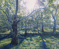 "Glorious Morning in Gap Creek, Size: 36"" x 30"" (91cm x 76cm)"