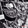 Padlocks of Love - Pont Neuf - Paris