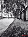 Autumn walk - Port des saint-Pères - Paris