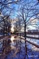 Trees reflections - Allée des Cygnes - Paris