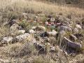 Túmulo del yacimiento Ballesteros A de Albalate de Cinca (Huesca). PGOU de Albalate de Cinca. Diputación General de Aragón y Ayuntamiento de Albalate de Cinca.
