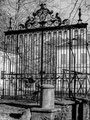 BAUDEMENT Angélique - Précy sur vrin - 446 habitants