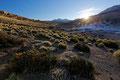 Sonnenaufgang bei den Geysieren in El Tatio, Chile