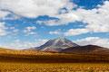 Bolivien, Siloliwüste über 4000m.ü.M