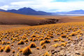 Siloli Wüste, Bolivien