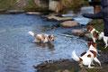 Eyla ging auch baden; Aaron und Janne konnten's nicht fassen!