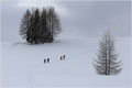 Winterwandern - Andreas Seller