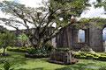 Costa Rica_Cartago_Las Ruinas de la Parroquia2