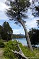 Argentinien_Villa La Angostura_Los Arrayanes NP - Laguna Patagua4