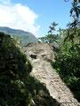 Kolumbien_Ciudad Perdida Trek - Die Hauptebene5