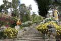 Bolivien_Titicacasee_Isla del Sol2