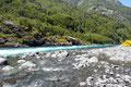 Chile_Vicente Peréz Rosales NP_Fluss Petrohué2