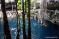 Mexiko_Yucatán Halbinsel_Valladolid_Cenote Oxmán4