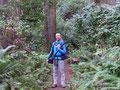 USA_Washington_Olympic NP_Ozette Trail1