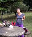 Costa Rica_Monteverde_Curi-Cancha Reserve_Nasenbär2