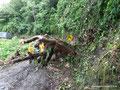 Kolumbien_Trampolina del Muerte_Hilfe wird benötigt