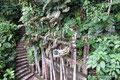 Mexiko_Zentrale Atlantikküste und Puebla_Xilitla_Edward James skurriles Monument im Dschungel17