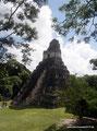 Guatemala_Norden_Tikal_Nochmal der 47 m hohe Templo des Jaguars