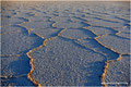 Bolivien_Salar de Uyuni_Isla Pescado - Tolle Struktur