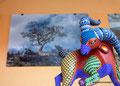 Mexiko_Zentrale Atlantikküste und Puebla_Puebla_Mexikanische Art